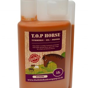T.O.P. Horse