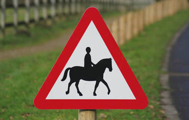 horse riding hacking roads cars safety