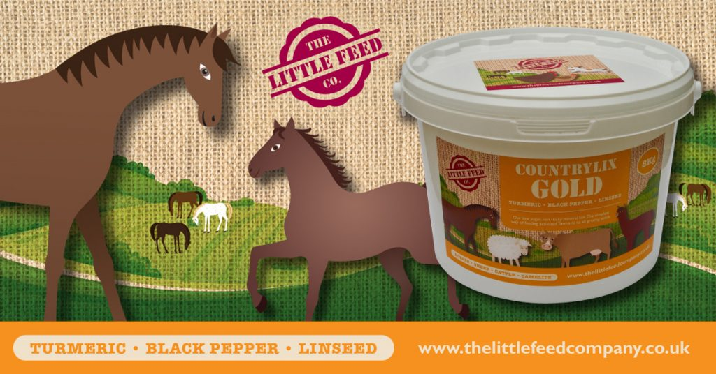turmeric linseed black pepper horse pony