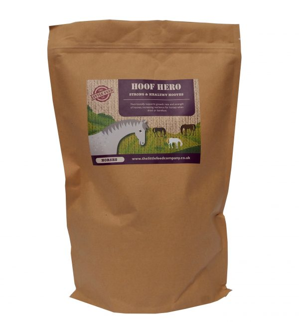horse hoof supplement biotin