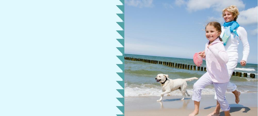 dog holiday