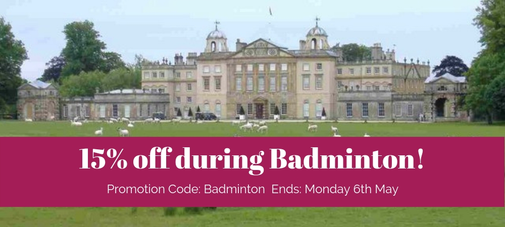 badminton special offer